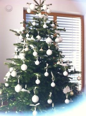Weihnachtsbaum 2011