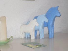 Für Philuko unsere Dala-Pferd-Parade