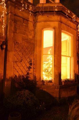Sneak Peak 3 Weihnachtsbaum 2012