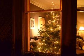 Unser WZ mit Tannenbaum 2012 im Vorbeigehen