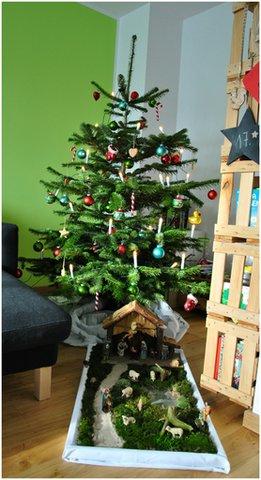 unser erster Baum - Weihnachtsbaum 2013