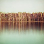 Leinwanddruck – Mandie D., 60 x 60 cm