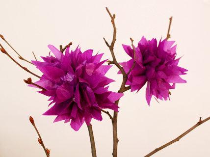 blumen aus pompons, frühlingsdeko: (blitz-)seidenpapierblumen oder mini-pompoms, Design ideen