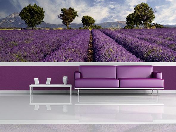 Die Farbe Lila Oder Auch Violett Ist, Obwohl Sie Eine Sehr Dominante Farbe  Ist, Eine Farbe, Die Vor Allem Frauen Mögen Und Die Sie Gerne In Ihrer ...