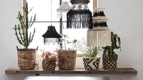 Zimmerpflanzen Deko Ideen Zimmerpflanzen Wohnideen