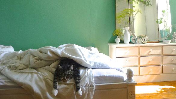 Schlafzimmer einrichten: Tipps und Ideen