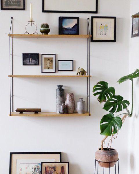 Etwas Neues genug Was das Herz begehrt... Heute: Zimmerpflanzen & wie sie überleben #FA_87