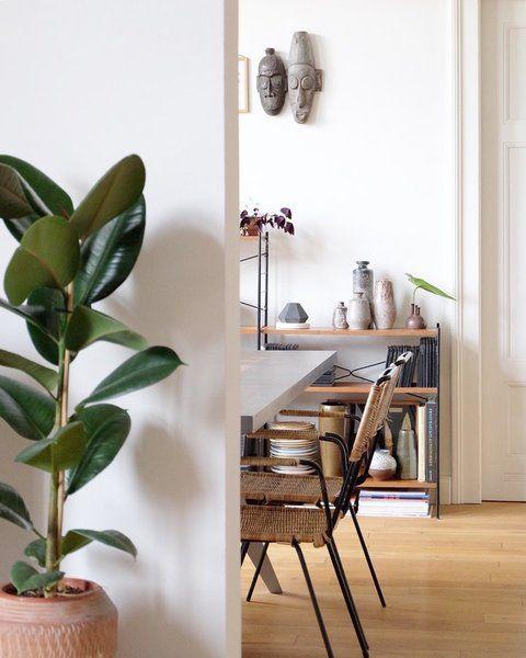 was das herz begehrt heute zimmerpflanzen wie sie berleben. Black Bedroom Furniture Sets. Home Design Ideas