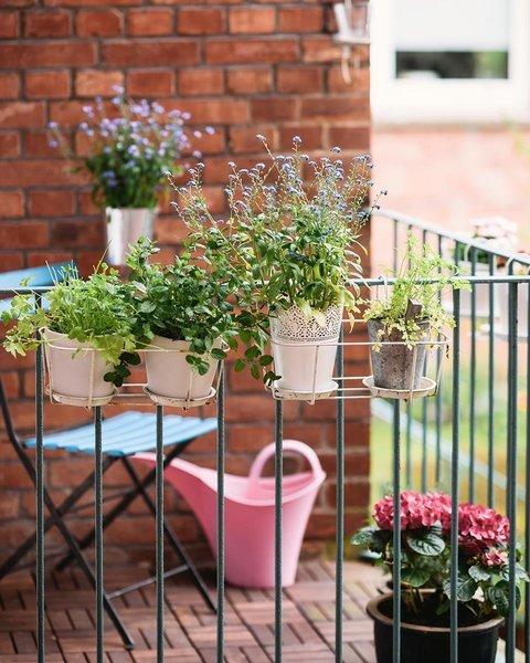 balkonpflanzen die besten tipps und tricks. Black Bedroom Furniture Sets. Home Design Ideas