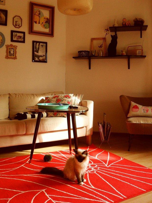 Herbstliches orange farbgestaltung mit der warmen farbe for Wohnung farbgestaltung