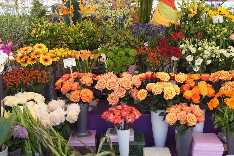 Blumen nach Farben: Was passt zu Gelb und Orange ...