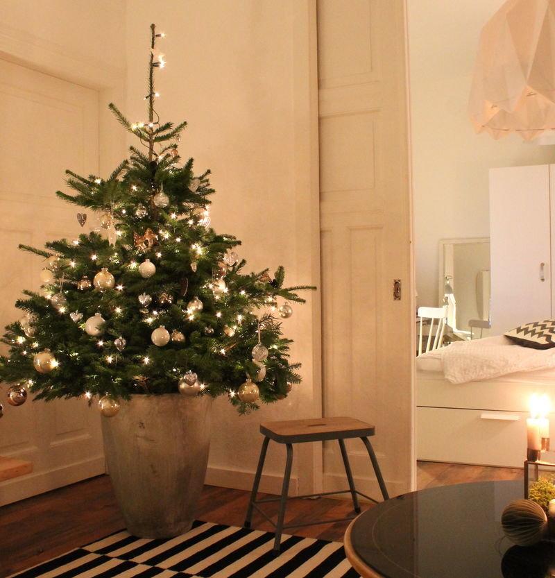Wem Echte Kerzen Zu Riskant Sind, Kann Zu Elektrischen Kerzen Für Den  Weihnachtsbaum Greifen. Eine Einfache Lichterkette Ist Aber Auch Sehr Schön!