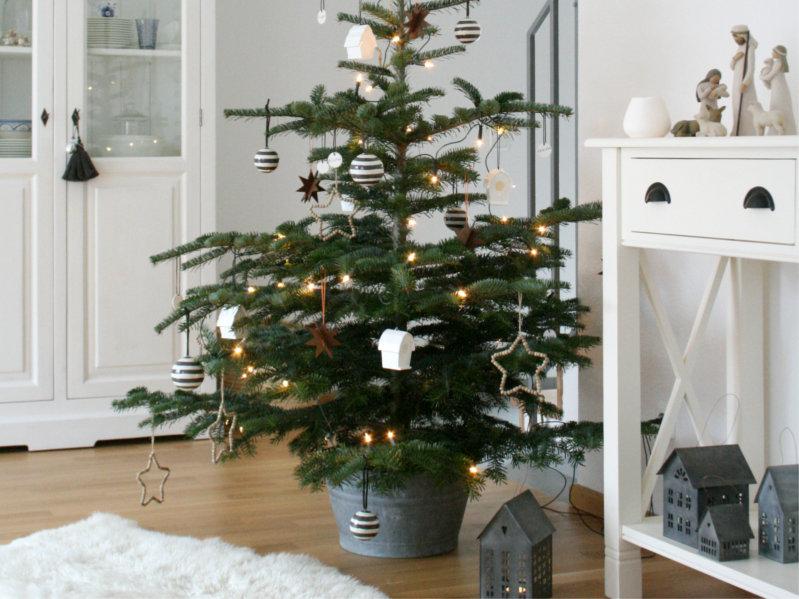 Herzstück An Heilig Abend: Der Weihnachtsbaum