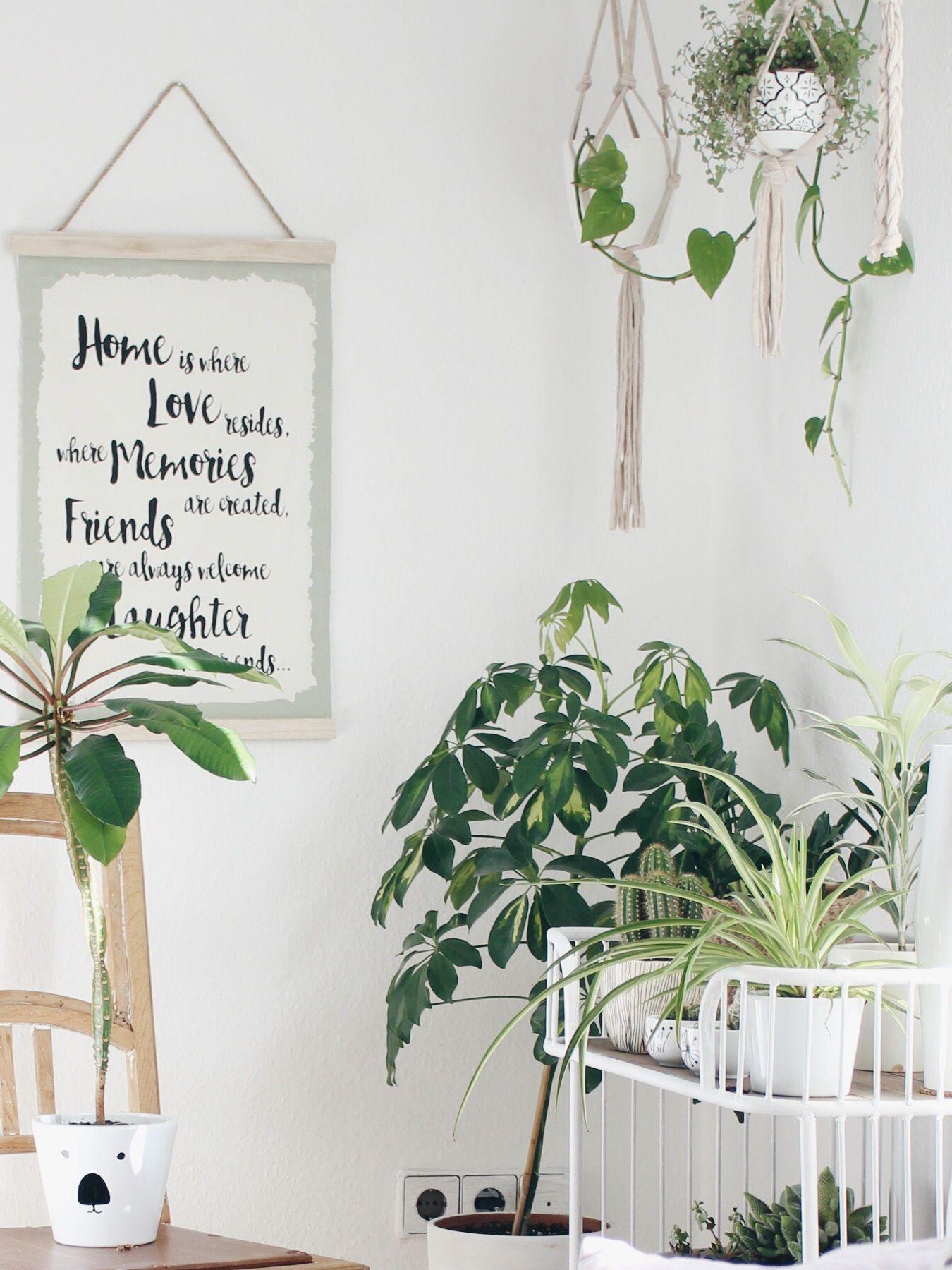 Die Schonsten Pflanzen Deko Ideen Seite 94
