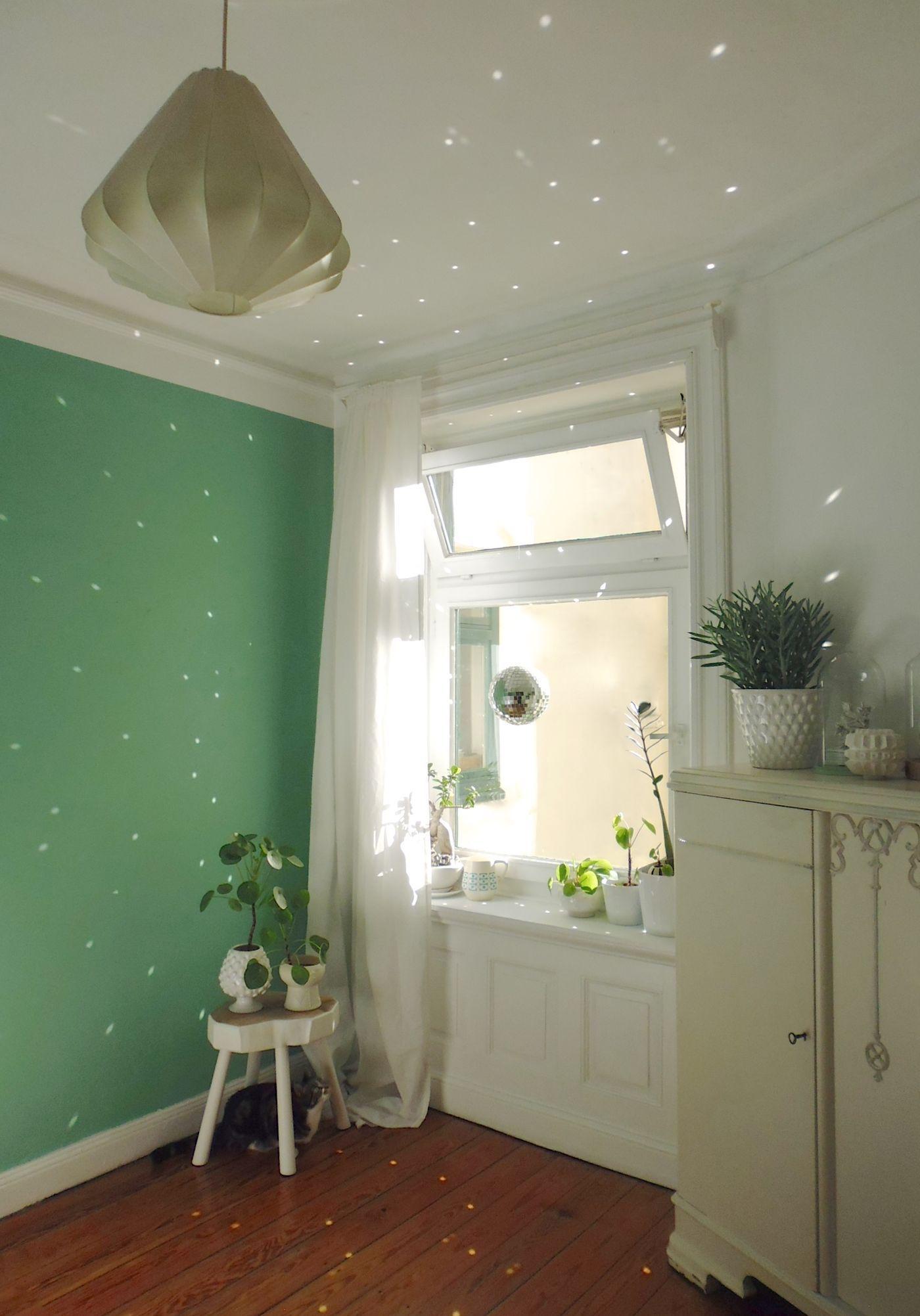 die sch nsten pflanzen deko ideen seite 5. Black Bedroom Furniture Sets. Home Design Ideas
