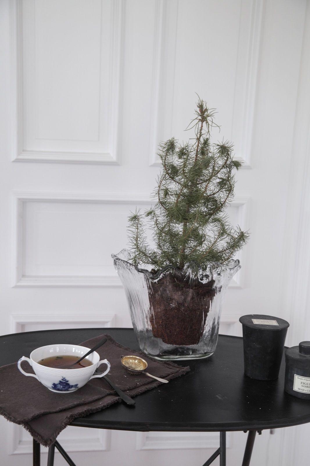 Merry Christmas! Alle Wohnideen zum Thema Weihnachten - Seite 195