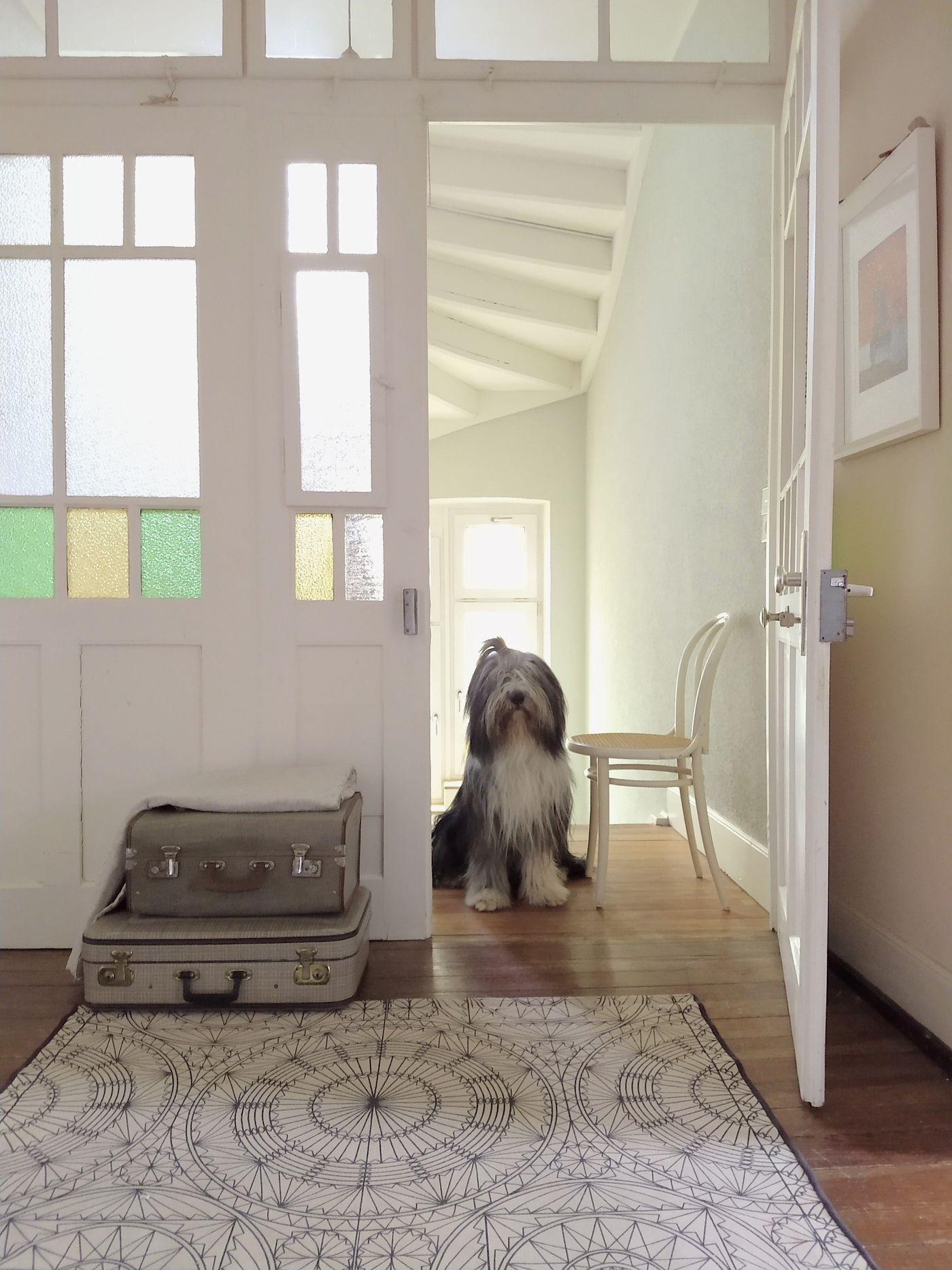 Treppenhaus gestalten: Schöne Ideen und Tipps