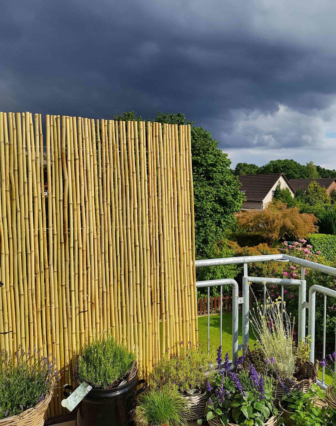 Sichtschutz für Garten und Terrasse Die besten Ideen Seite 11
