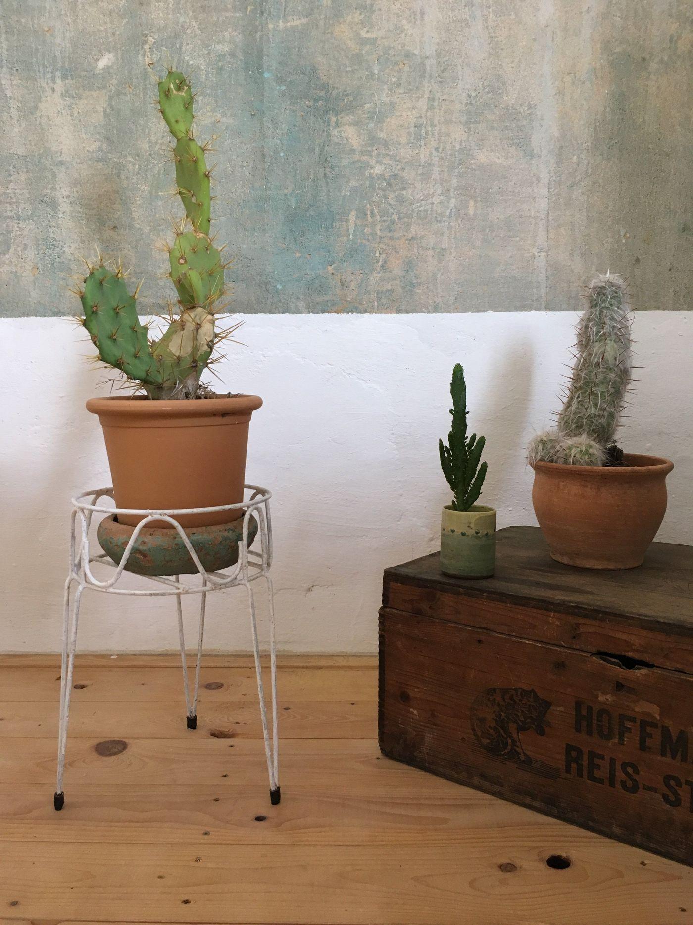 holzkisten deko ber 100 ideen seite 2. Black Bedroom Furniture Sets. Home Design Ideas
