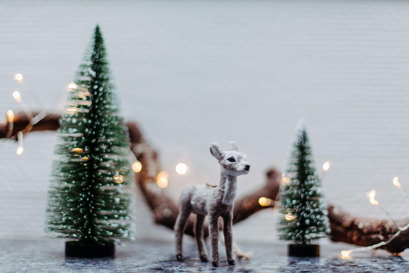 Weihnachtsdeko Kinderzimmer.Die Schönsten Ideen Für Deine Weihnachtsdeko Seite 141