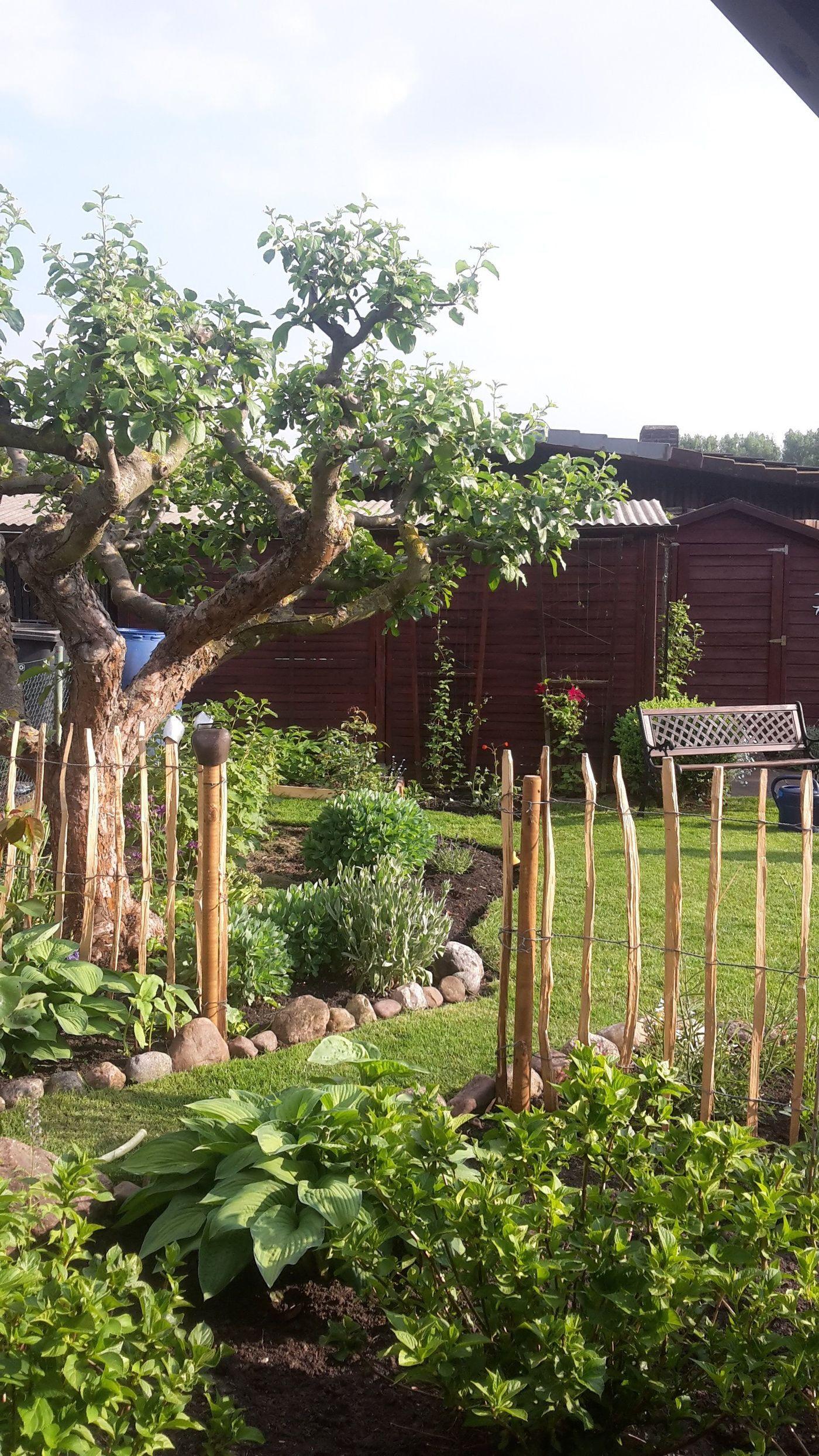 Die Schonsten Gartenzaun Ideen