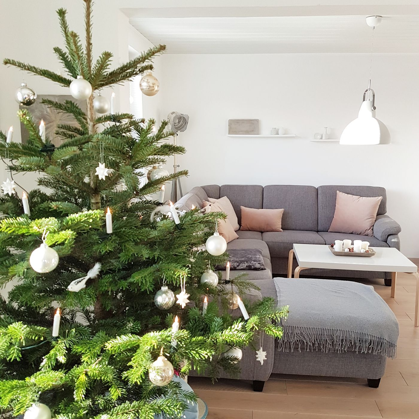 Merry Christmas! Alle Wohnideen zum Thema Weihnachten - Seite 181
