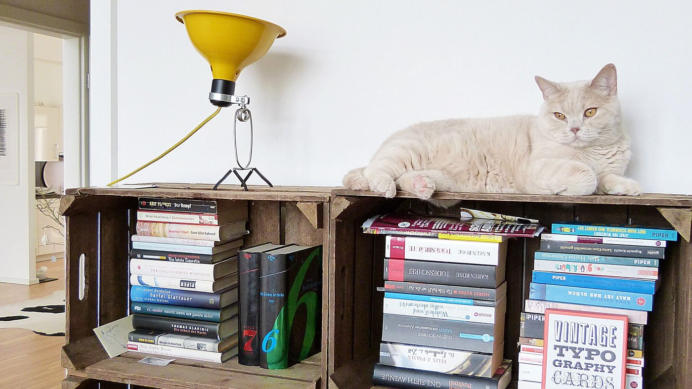 Hervorragend Möbel aus Obstkisten als Upcycling Idee YD63