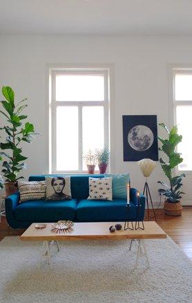 monstera fensterblatt bilder und ideen mit der trendpflanze. Black Bedroom Furniture Sets. Home Design Ideas