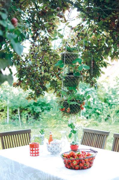 Top 3 Diy Ideen Fur Balkon Und Terrasse Solebich De